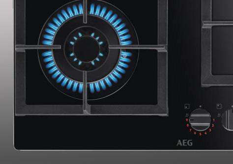 Servicio técnico reparación placa de gas AEG Hospitalet de Llobregat